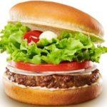 【植物肉バーガー(プラントベースミート)】東京で食べれるの?おいしいの?